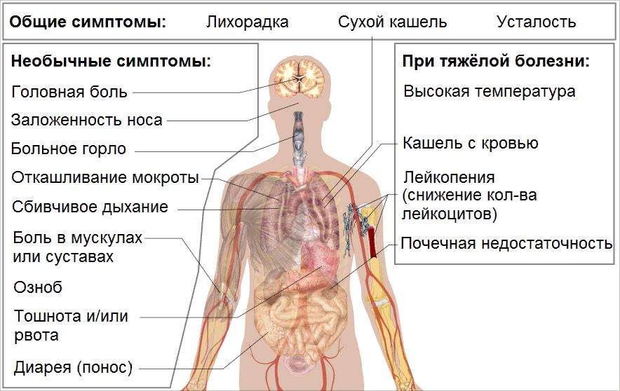 Учащенный пульс при простуде – стоит ли беспокоиться?
