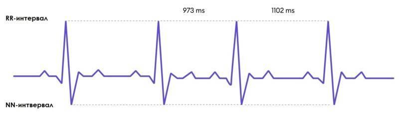 Вариабельность пульса. норма сердечного ритма. что это такое, показатели и значение, расшифровка
