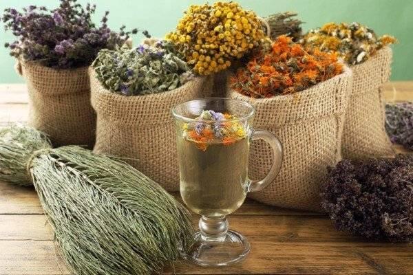 Лечение брадикардии народными средствами в домашних условиях