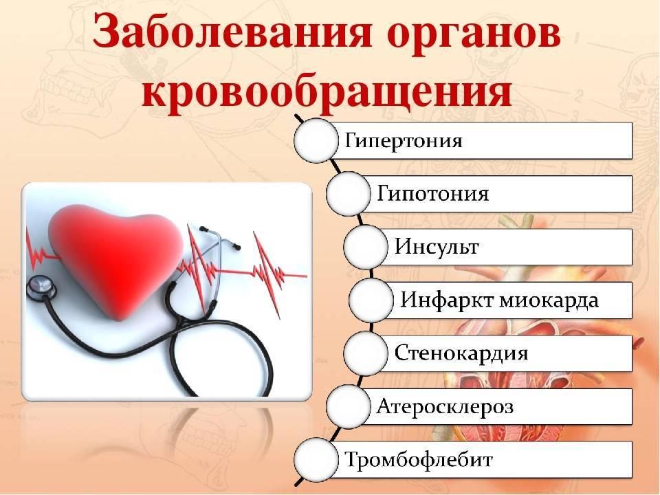 Секреты правильного питания для укрепления сердца и здоровья сосудов