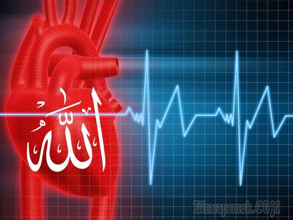 Синусовая аритмия сердца: что это значит, чем опасна, симптомы и лечение