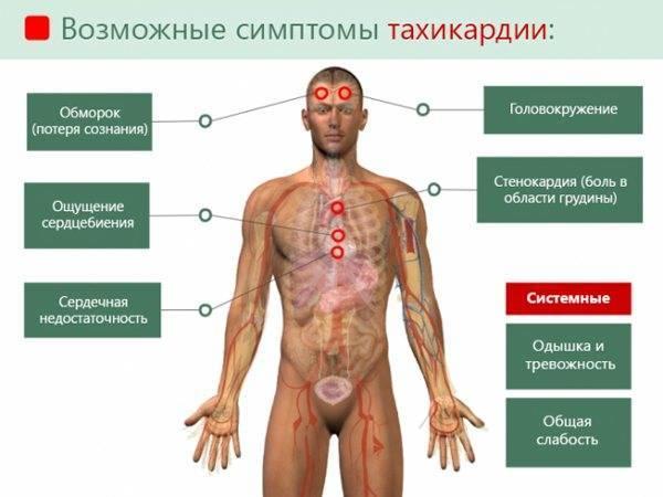 Народные средства от тахикардии