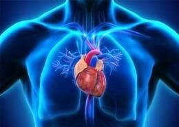 Кардиомиопатия. причины, симптомы, признаки, диагностика и лечение патологи :: polismed.com