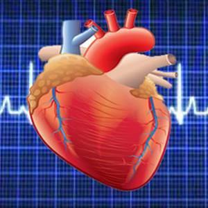 Тахикардия: что делать при учащенном сердцебиении