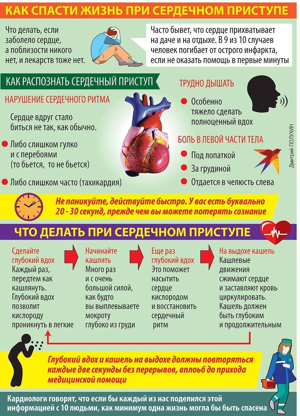 8 полезных свойств пустырника для сердца и сосудов + способы применения