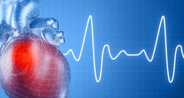 Синусовая брадикардия сердца – лечение народными средствами и чем опасна брадикардия?