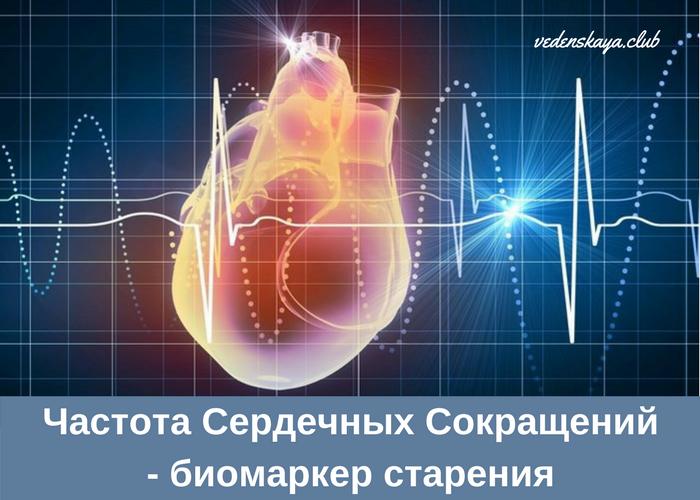Сколько должно быть ударов в минуту сердцебиение