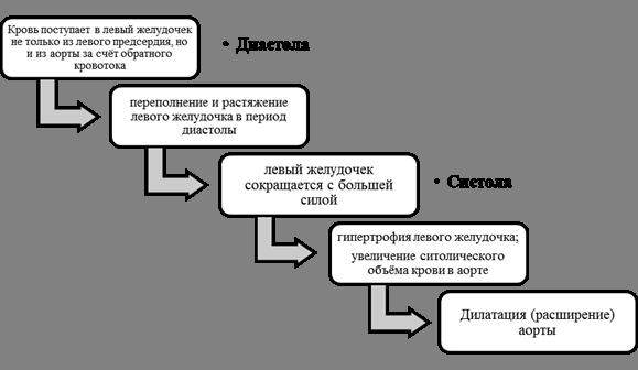 Аортальная недостаточность (клапана аорты): степени, причины, симптомы, лечение