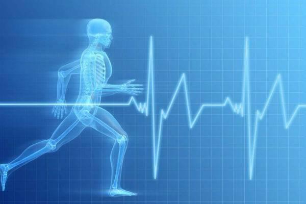 Брадикардия сердца: как лечить? симптомы, причины. что делать при брадикардия сердца?
